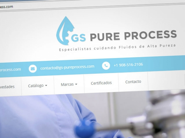 GS Pure Process